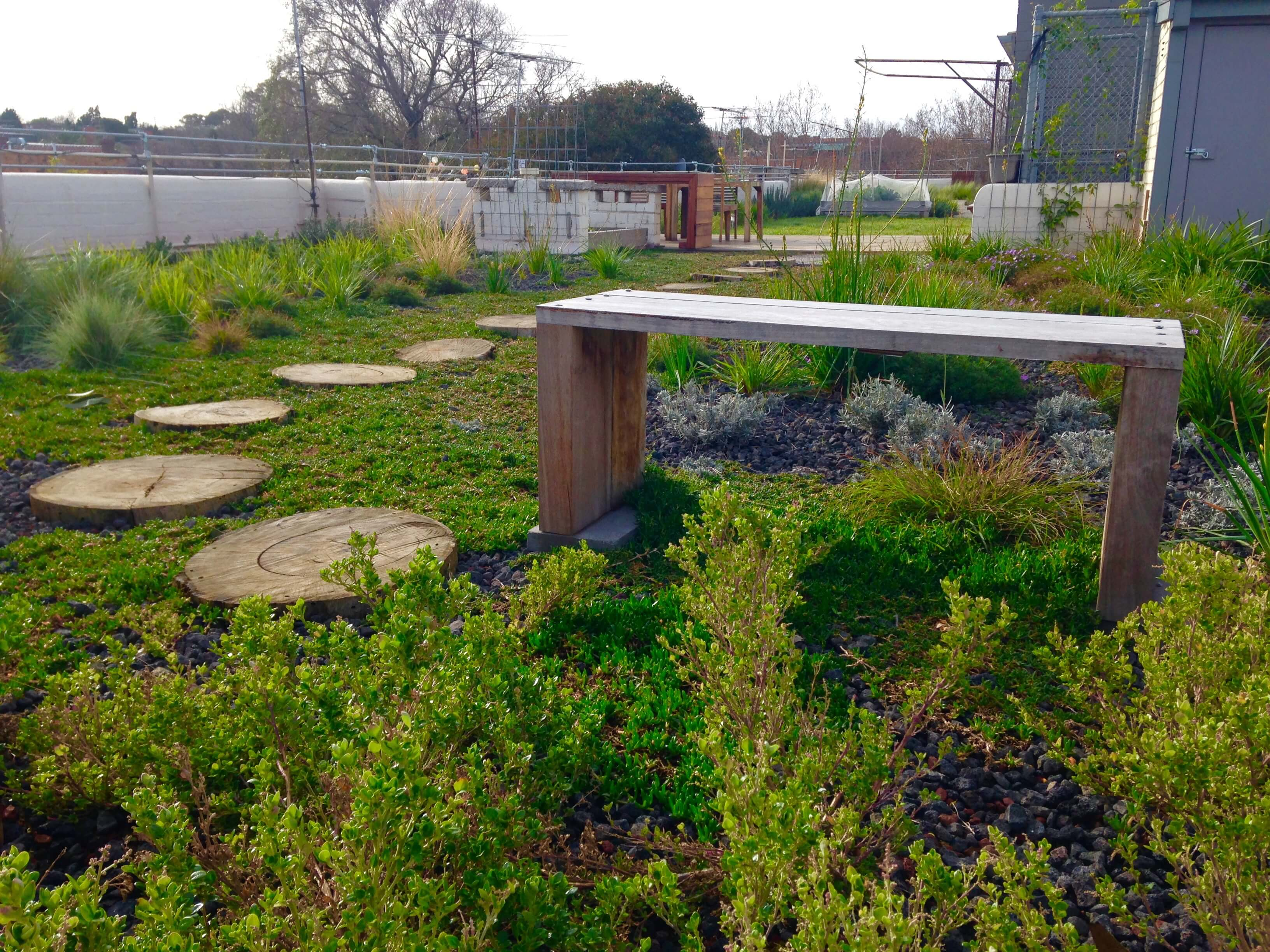 Green Roof in the City