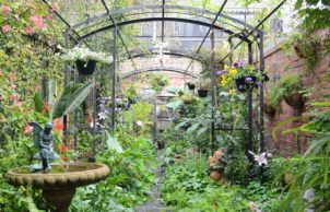 Anne's Garden