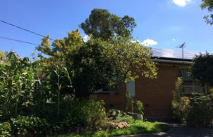 1960s Retrofitted Home Improvement – Burwood