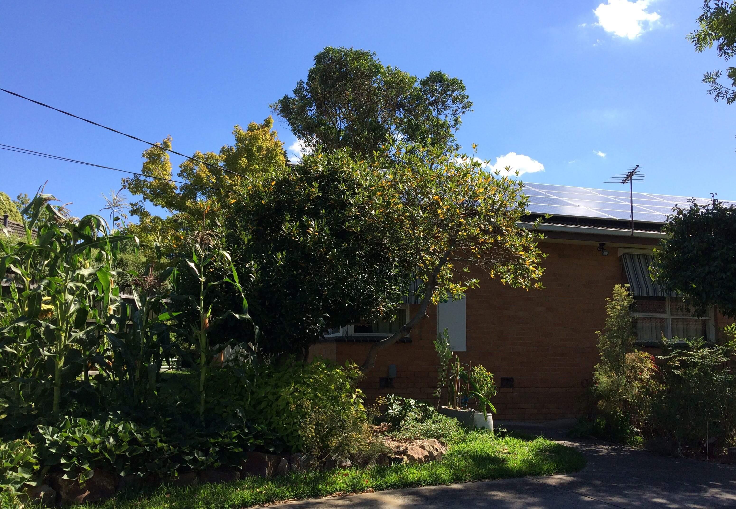 1960s Retrofitted Home Improvement – Burwood