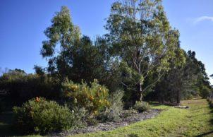 Native Garden Retreat in Moruya