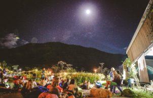 JCU Community Garden: Mayi Tjulbin Ma Bugarra