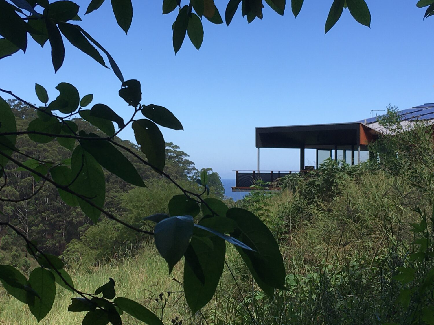 Korora Coastal Forest House