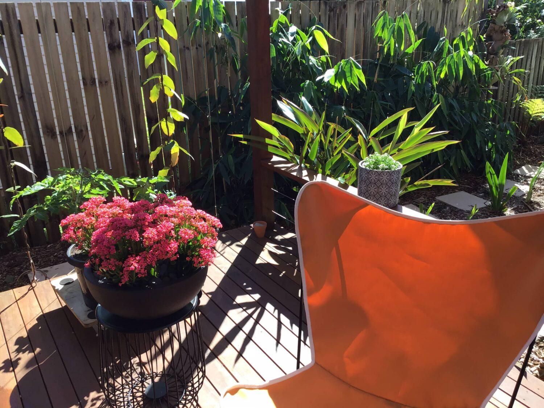 Edible and water efficient garden